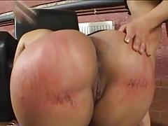 Large Ass